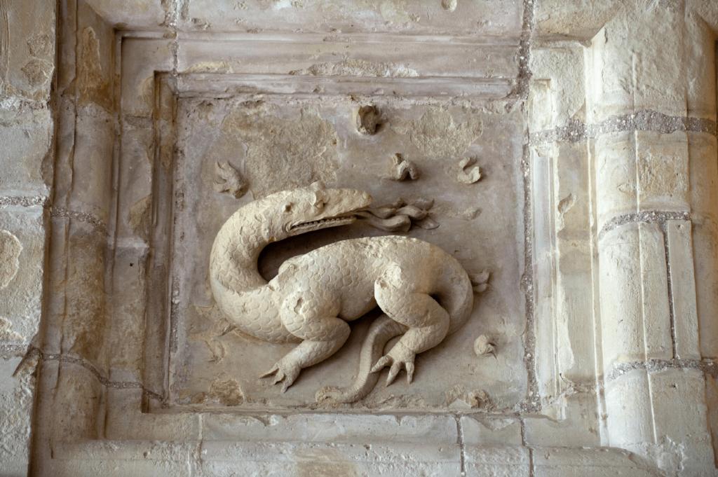 Salamander Chambord chateau Finding France