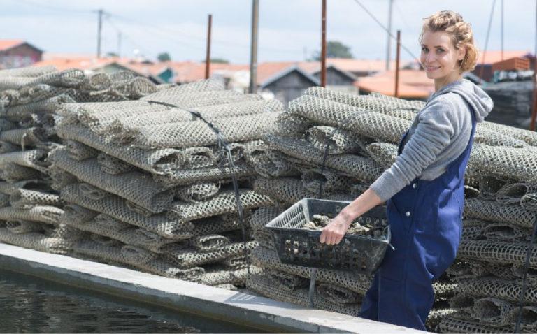 Oyster farmer Finding France